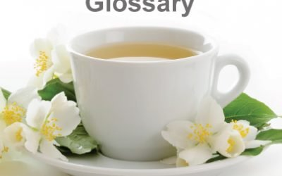White Tea Glossary